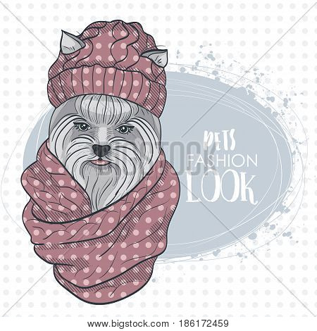 Vector pets fashion look, elegant dog womans face with knitting cap and snood