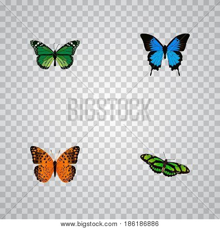 Realistic Common Blue, Green Peacock, Danaus Plexippus And Other Vector Elements. Set Of Butterfly Realistic Symbols Also Includes Green, Fly, Cypris Objects.