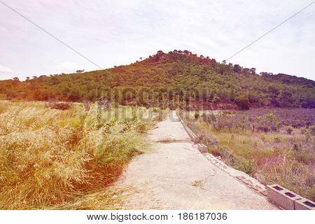 Rural road leading to hill, Valencia region, Spain