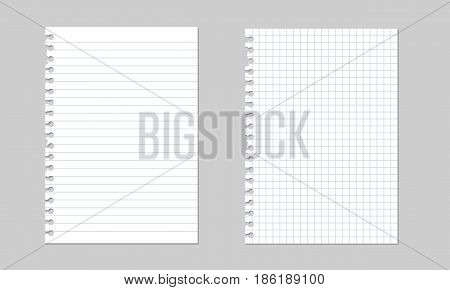 Set of vector realistic illustrations of a torn sheet of paper from a workbook with shadow isolated on a gray background