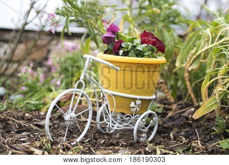 Small white Bicycle with yellow plastic pot and red flowers for garden decoration