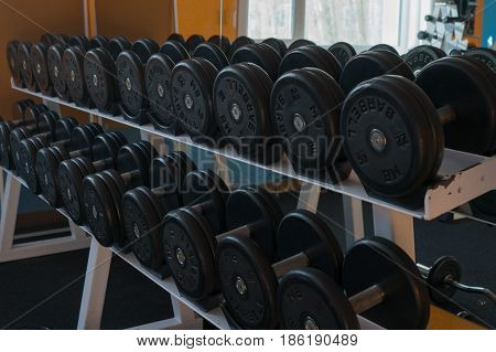 barbells and free weights at the modern gym