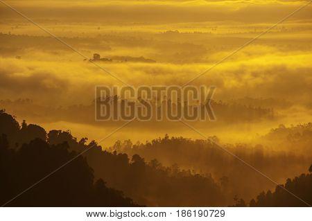 Mountain range view from peak in misty morning sunrise, tropical dense jungle.