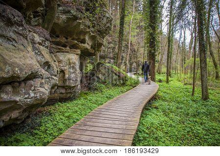 Mullerthal Trail Landscape   Petit Luxembourg Suisse Echternach
