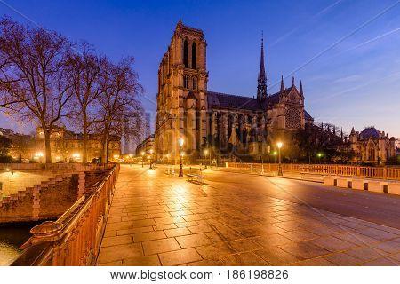 Notre Dame de Paris cathedral at dawn with the Pont au Double. Ile de La Cite. 4th Arrondissement Paris France