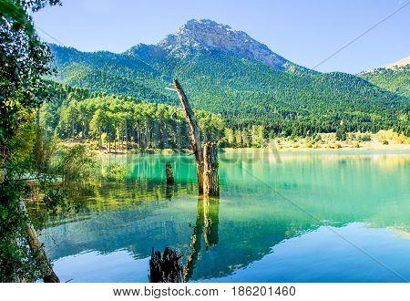 Mirror Mountain . Reflection of mountain and trees on lake Doxa. Mountainous Corinth. Greece
