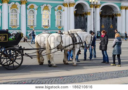 SAINT PETERSBURG RUSSIA - MAY 1 2017: Horse-drawn carriage on Palace Square in front of State Hermitage Museum (Winter Palace). Unknown people are walking outdoors