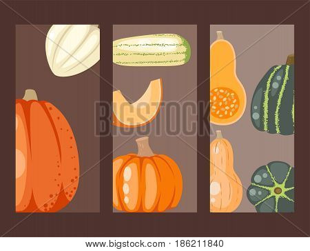 Fresh orange pumpkin cards decorative seasonal ripe food organic thanksgiving stem healthy raw vegetarian vegetable. Natural harvest patch garden holiday autumn plant.