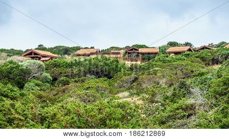 Verandas for recreation in the forest on the coast of Ayia Napa