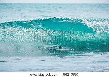 Blue barrel wave in tropical ocean. Wave crashing and sun light. Clear water.