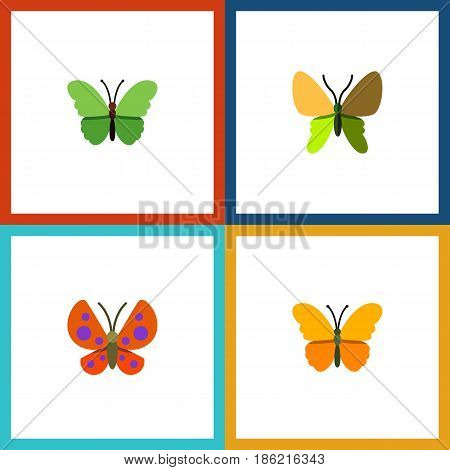 Flat Butterfly Set Of Moth, Milkweed, Butterfly And Other Vector Objects. Also Includes Butterfly, Moth, Monarch Elements.