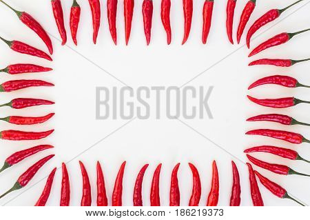 red hot chili peppers, popular spices, barbecue, food making concept - decorative frame composed of multiple pods of red hot pepper on a white background, empty space for the text, top view, flat lay
