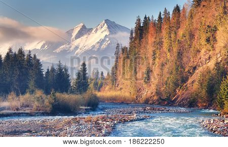 Mountain River On Showy Peak Background