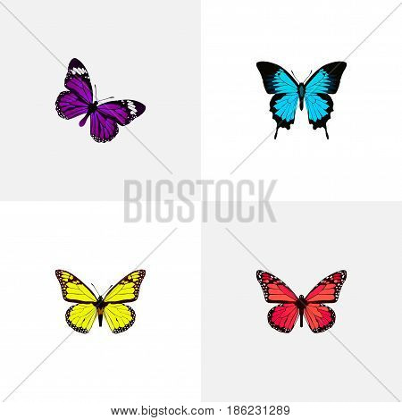 Realistic Azure Peacock, Archippus, Butterfly And Other Vector Elements. Set Of Moth Realistic Symbols Also Includes Monarch, Yellow, Beautiful Objects.