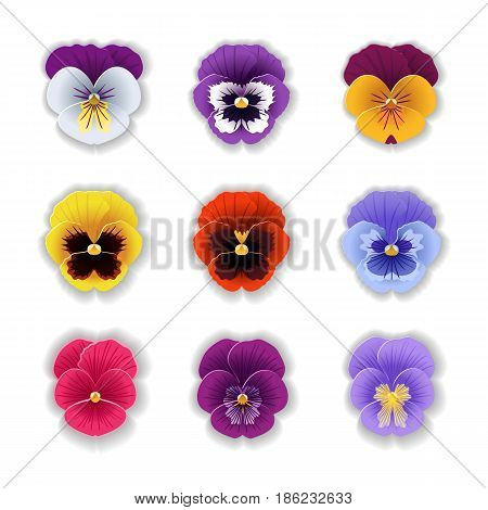 Set of nine cute pansy flower in paper art style isolated on white background. Origami style. Vector illustration.