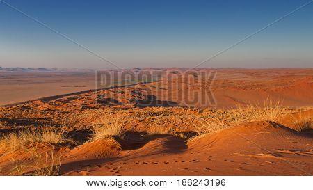 Orange Elim dune at Sossusvlei Namibia Africa
