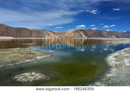 The southern sloping shore of Lake Pangong: greenish shallow water gradually change color to blue high mountains in the background in a saturated blue sky float white clouds Ladakh India.