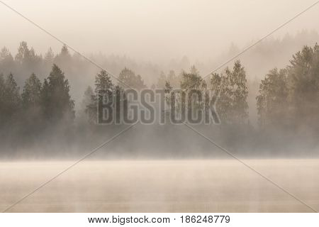 Foggy forest and lake at dawn Finland