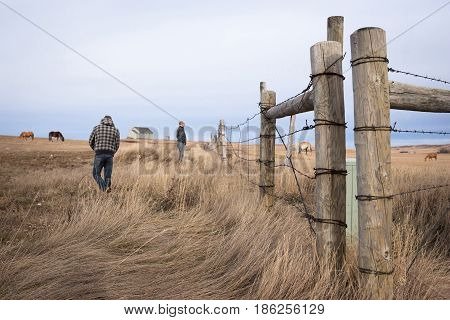 horizontal image of a father and son watching the horses graze in the pasture on either side of the fence in early spring.