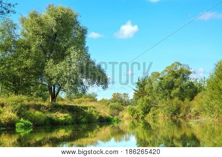 forest lake in clear sunny day. beautiful summer rural landscape with river and forest.