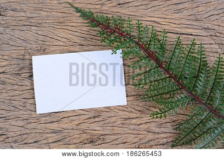 green leaves with blank card isolated on wood.