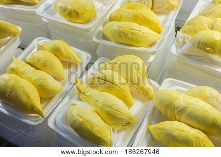 Close up durian flesh yellow gold on the market Tropical Fruit