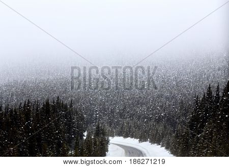 Snow Falling Mountains Canada