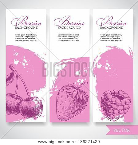 Organic food berries banners. Hand drawn berries. Cherry strawberry and raspberry on rough pink watercolor paint background with white splashes. Vector berries illustration.