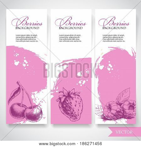 Organic eco berries banners. Hand drawn berries. Cherry strawberry and raspberry on rough pink watercolor background with white splashes. Vector berries illustration.