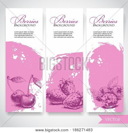 Organic eco berries banners. Hand drawn berries. Cherries strawberries and raspberries on pink watercolor background with white splashes. Vector berries illustration.
