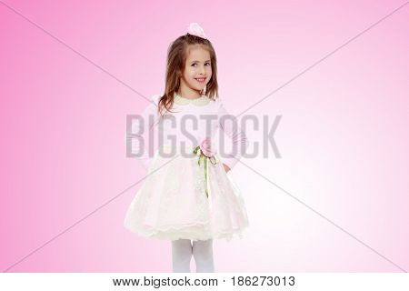 Dressy little girl long blonde hair, beautiful pink dress and a rose in her hair.She put hands on hips.Pale pink gradient background.
