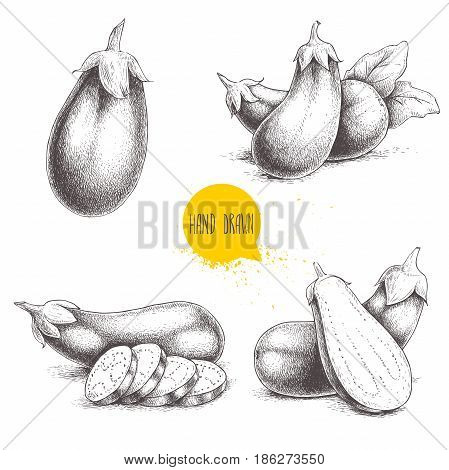 Hand drawn sketch style fresh eggplants. Fresh eggplant and sliced eggplant. Healthy fresh organic food isolated on white background.