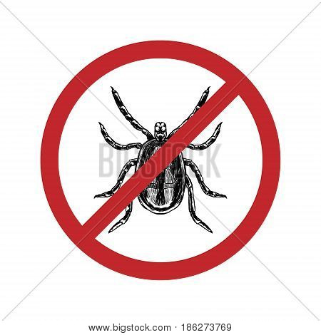 Drawn mite in crossed out circle. Top view. Isolated realistic sketch of animal. Line graphic design. Black and white drawing insect. Vector illustration.
