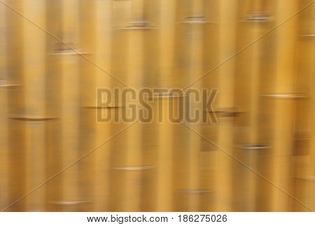 yellow blur movement of bamboo trees for background