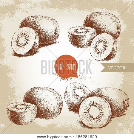 Hand drawn kiwi fruit vector illustration set. Sketch style vector design isolated on grunge background. Tropic fruit.