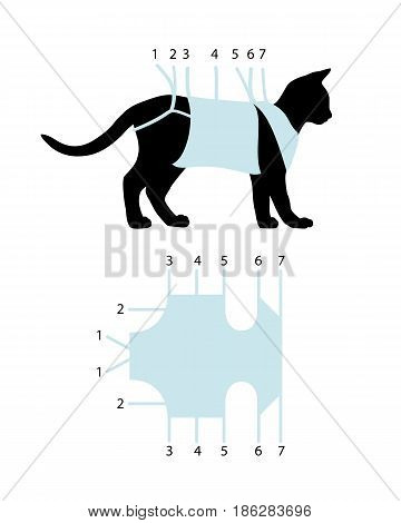 Scheme of binding of postoperative bandage on a cat