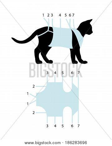 Scheme of binding of postoperative bandage on a cat
