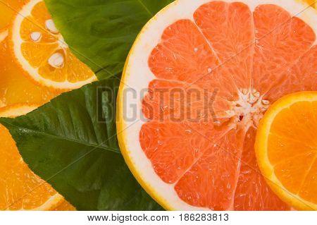 Slices of a lemon orange grapefruit close up