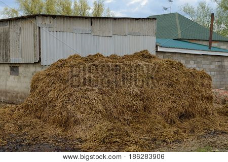 Pile of manure in front of a barn
