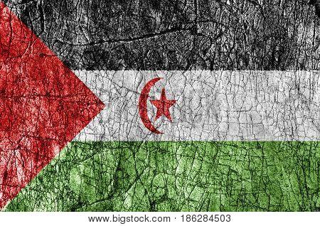 Grudge stone painted Sahrawi Arab Democratic Republic flag