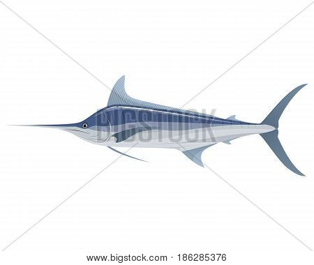 Vector illustration of a big blue marlin