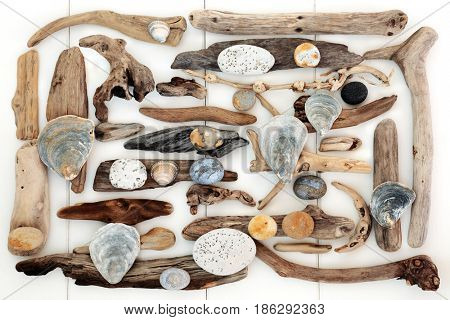 Abstract background of natural driftwood, seashells and rocks from the seaside on wooden white background.