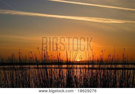 Sunrise on Lake Tohopekalinga