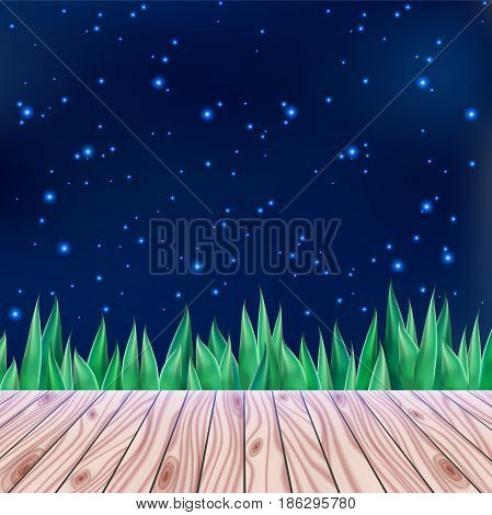 Starry summer sky, bright stars and wooden panel bridge, romantic night time, spring wonder, fresh green plant, rustic outdoor holiday. Vector illustration