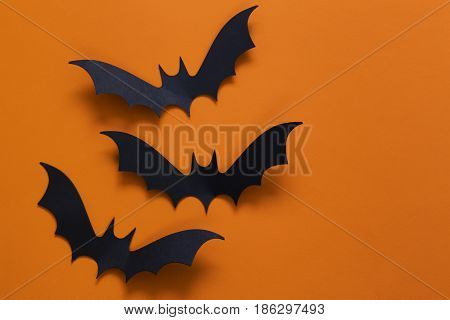 Halloween decorations - black spider web and bats
