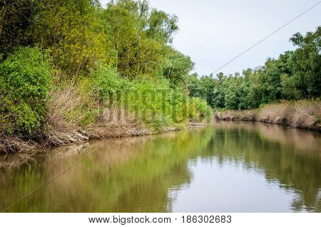 Danube Delta in Tulcea county, Romania. Canal with trees and vegetation reflected in the water. Specific landscape of this area.