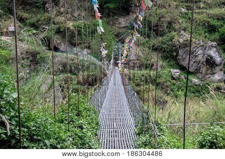 Swinging Foot Bridge Over Ravine