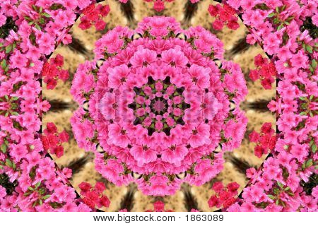 Pink Azalea Kaleidoscope