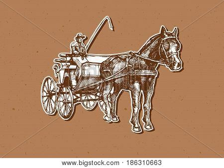Vector hand drawn illustration of spider phaeton. Open sporty carriage drawn by one horse.