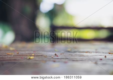 Blur and bokeh image of scrap leaves and flowers on wooden table with green nature background